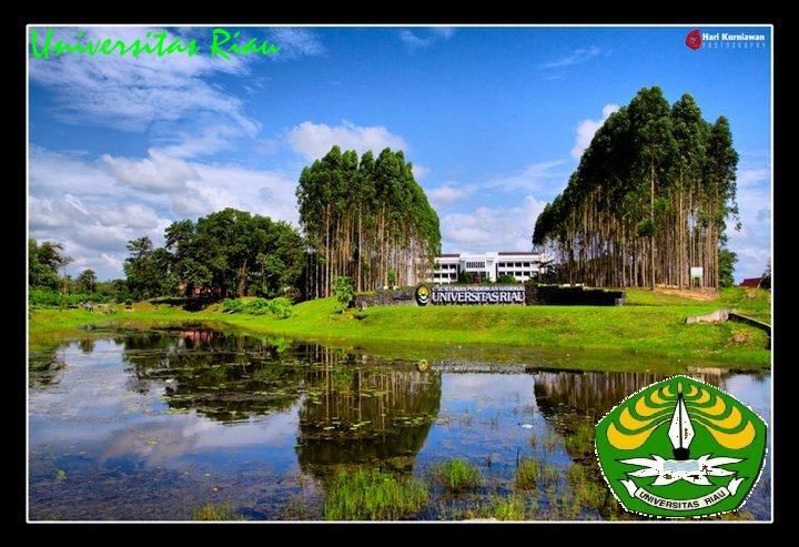 Informasi Sertifikasi Guru 2011 PSG Rayon 105 Universitas Riau